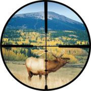 Burris 3.5X-10X-50mm Riflescope Matte Black Finish, Ballistic Plex Reticle