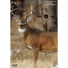 Birchwood Casey Dirty Bird PreGame Animal Targets Deer 16.5x24 Inch 3 Per Package 35401