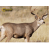 Caldwell The Natural Series Shooting Target Kits
