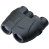 Leupold Rogue 10x25 Compact Porro Prism Waterproof Binoculars, Black