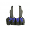 Tactical Assault Gear Phalanx Chest Rig Fury
